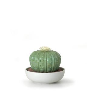 01040185 Difusor Cactus de Lladró