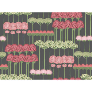 115/12037 Allium Botanica de Cole&Son