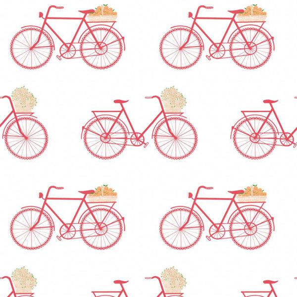 5435/001 Bicicletas rosa de Gastón y Daniela