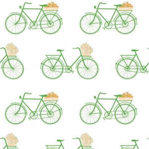5435/002 Bicicletas verde de Gastón y Daniela