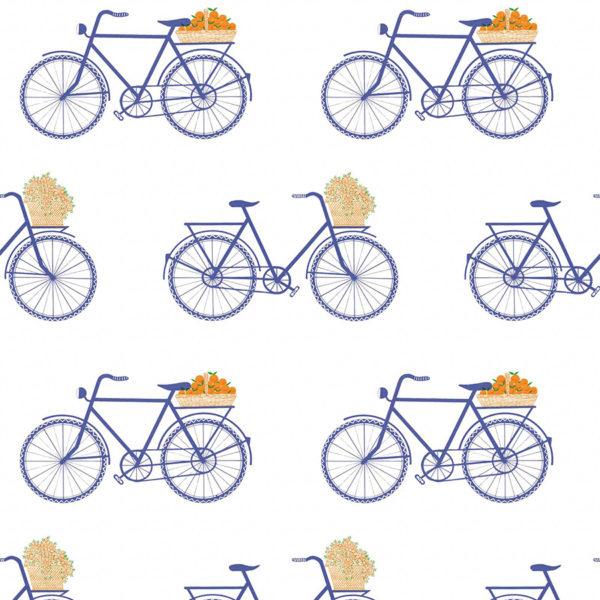 5435/003 Bicicletas azul de Gastón y Daniela