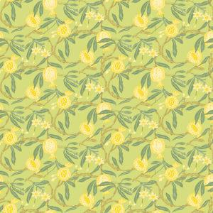 5439/004 Granadas amarillo de Gastón y Daniela