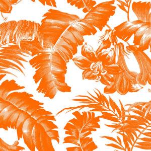 5449/001 Plantation naranja de Gastón y Daniela