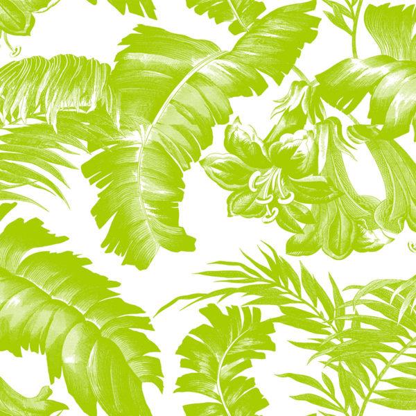 5449/002 Plantation verde de Gastón y Daniela